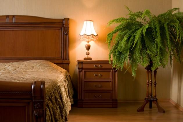 Фото: папоротник в интерьере спальни