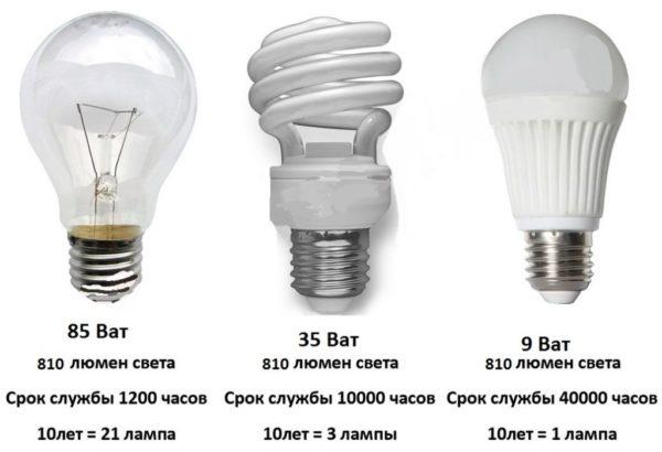 Лампочки различных видов: накаливания, люминесцентная, галогенная